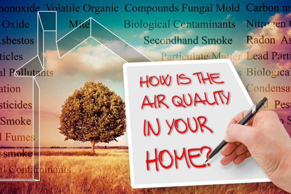 7 Ways to Improve Indoor Air Quality in Your Home